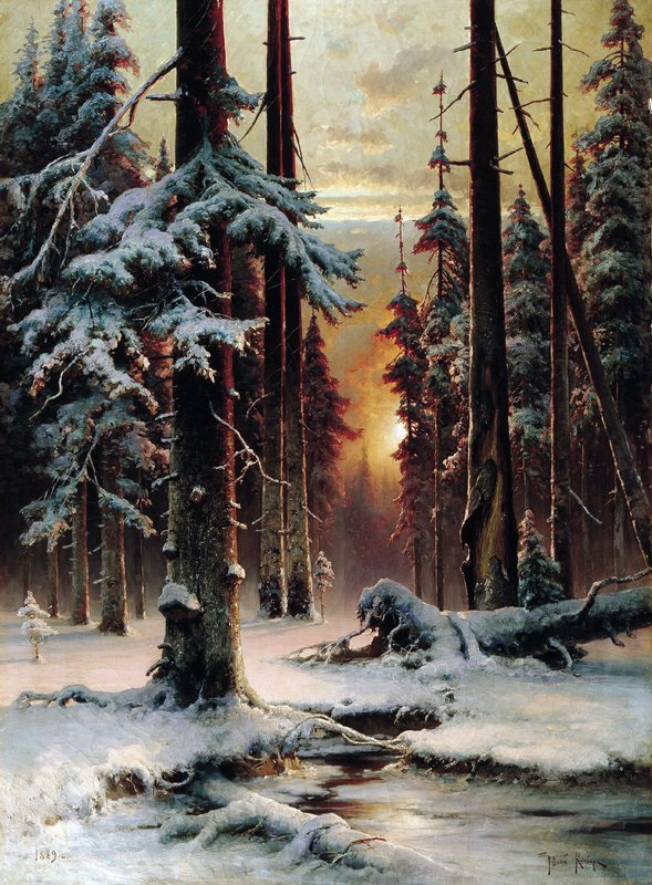 Winter Sunset in the Forest